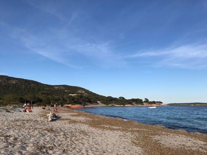 Pallombaggia Porto Vecchio Corsica