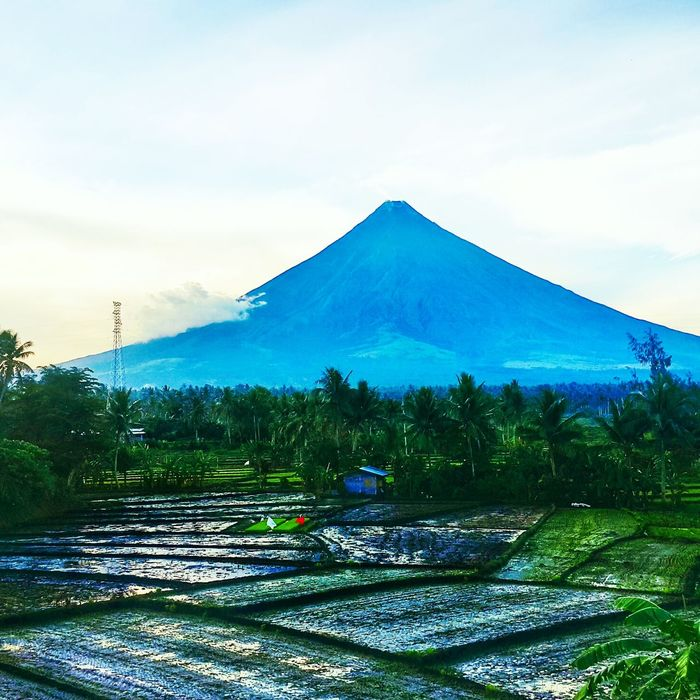 Philippines Philippines Island Life Volcano Mayon Mt. Mayon Enjoying Life Hello World Hanging Out Albay Showcase July Hidden Gems