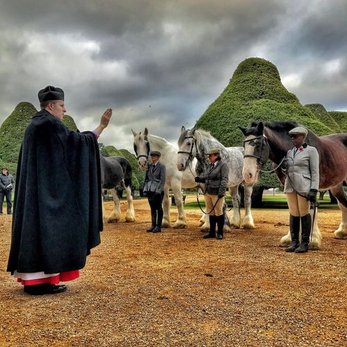 Real People Horses Shire Horses Blessing Priest Hampton Court Palace