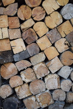 Abundance Arrangement Backgrounds Day Deforestation Firewood Forest Full Frame Large Group Of Objects Log Lumber Industry No People Pattern Roof Tile Shape Stack Still Life Textured  Timber Wood Wood - Material