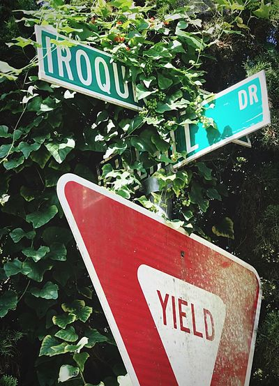 Yield to