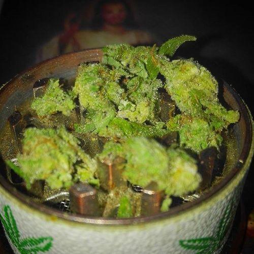 A cada Santo una vela ... es mejor tener amigos que enemigos Weed Weedstagram Thcommunity Thc Creamcaramel Marihuana Cogollo