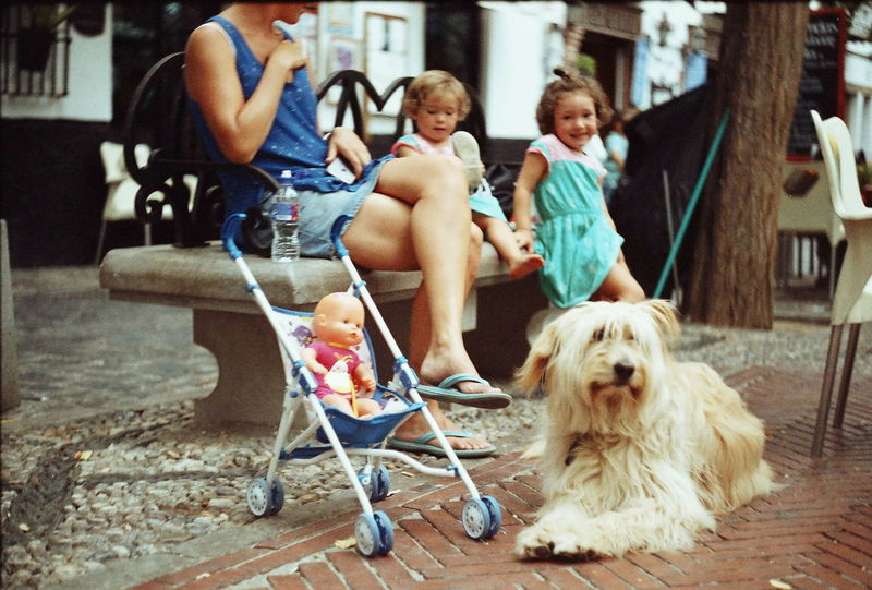 Cuteness from Madrid. Istillshootfilm Filmisnotdead Film Photography Zenit - Camera Zenit 122k Street Photography Streetphotography Spain ✈️🇪🇸 Spain Is Different Madrid Spain Madrid Dog Dogs Infant Doll My Year My View Finding New Frontiers Miles Away The Street Photographer - 2017 EyeEm Awards Pet Portraits