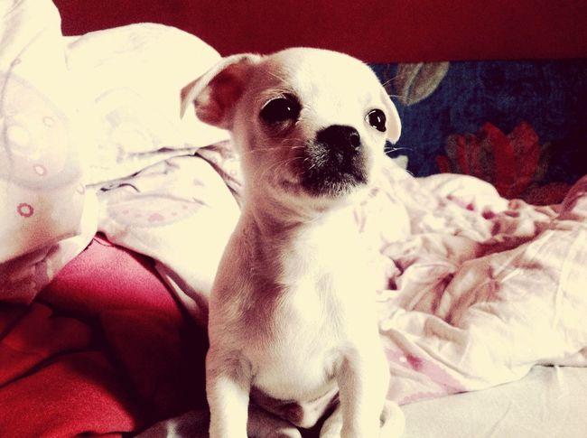 My baby! ??