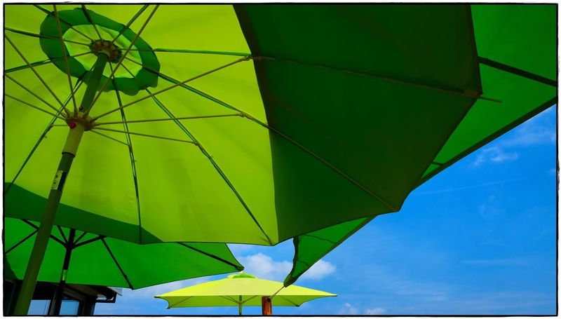 last summer Umbrella Green Color Sky Nature No People Low Angle View Outdoors Blue Multi Colored