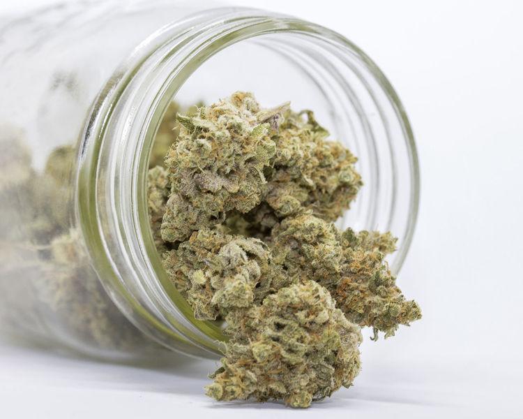 420 420 Smoker 420life Cannabis Close-up Dispensary Marijuana Marijuana Plant Medical Marijuana MMJ MMJ PHOTOGRAPHY Weed Weed Life