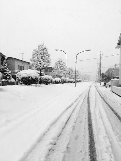 Snow Cold Temperature Winter Weather Snowing Nature Transportation Cold White Color No People Road