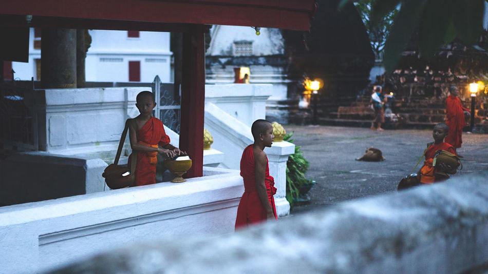 ALMS Luang Prabang, Laos Alms Giving Alms Giving Ceremony Buddhism Buddhist Monks Buddhist Temple Laos Laos Buddhis Laos Street Laos Street Photo Laos Street Photography Laos Street Scene Luang Prabang Monks Monks Walk Monks Wearing Orange Robes Orange Robes Religious  Street Photography Street Scene Temple Life Young Monks