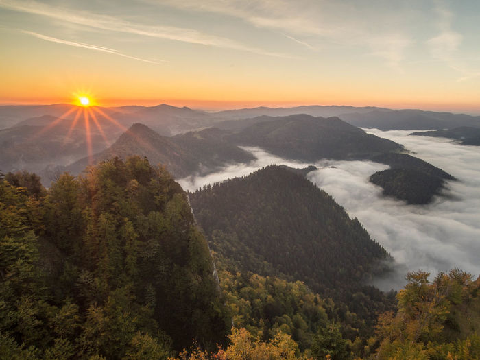 Mountain View Pieniny Poland Poland Poland Is Beautiful Sunrise_Collection Beauty In Nature Cloud - Sky Environment Fog Landscape Mountain Mountain Range Mountains Mountains And Sky Nature No People Outdoors Pieniny Scenics - Nature Sky Sun Sunrise Tranquil Scene Tranquility Tree