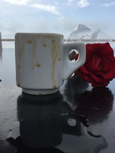Close-up of red rose on water