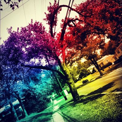 this is how I see the world SpaceEffect Trippy Daytripper Mindexpansion bagoffun picoftheday trip shrooms sunlight s