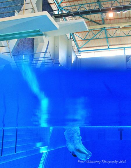 Diving Competition Action Blue Diving Diving In  Diving Time Divingphotography Indoor Under Water Photograpgy Undewater