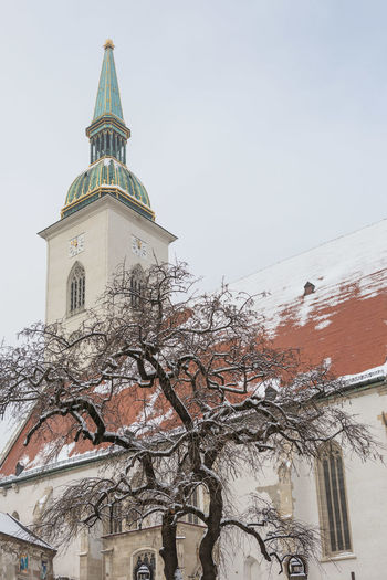 St. Martin's cathedral Built Structure Building Exterior Architecture Building Low Angle View Sky Religion Place Of Worship Belief Spirituality Tree No People Nature Cold Temperature Day Winter Snow Outdoors Spire  Cathedral Church