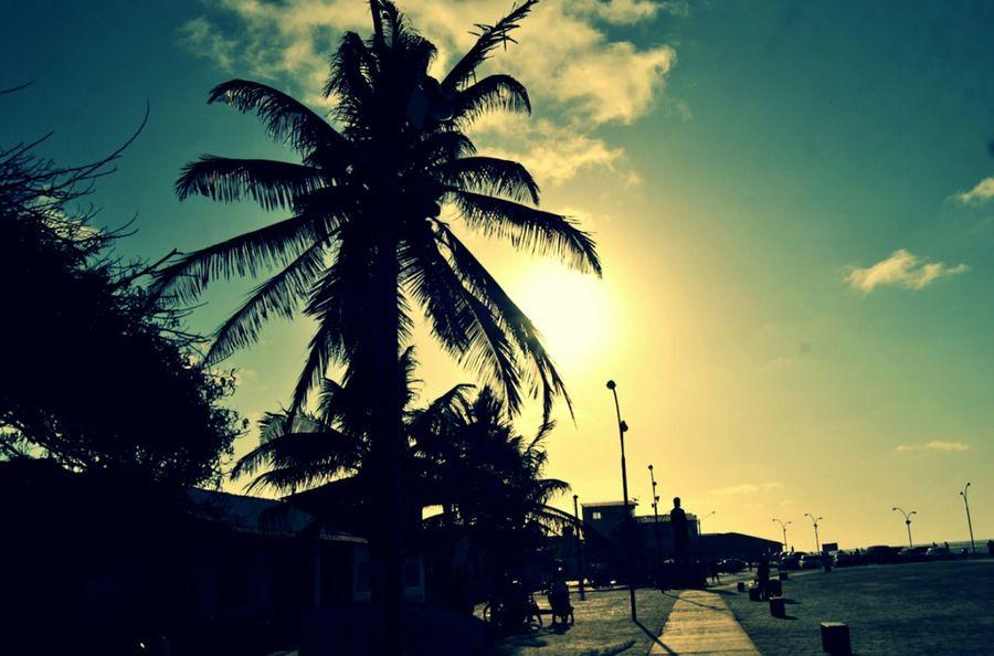 Pordosol Por Do Sol Por Do Sol ⛅ Por Do Sol, Perfeito Por Do Sol !!! Por Do Sol Na Raposa Brasil Brasil ♥ BrasilSensacional Brasil_brasileiro Brasildosmeusolhos_ Brasil ;)) Raposas Maranhão Raposa