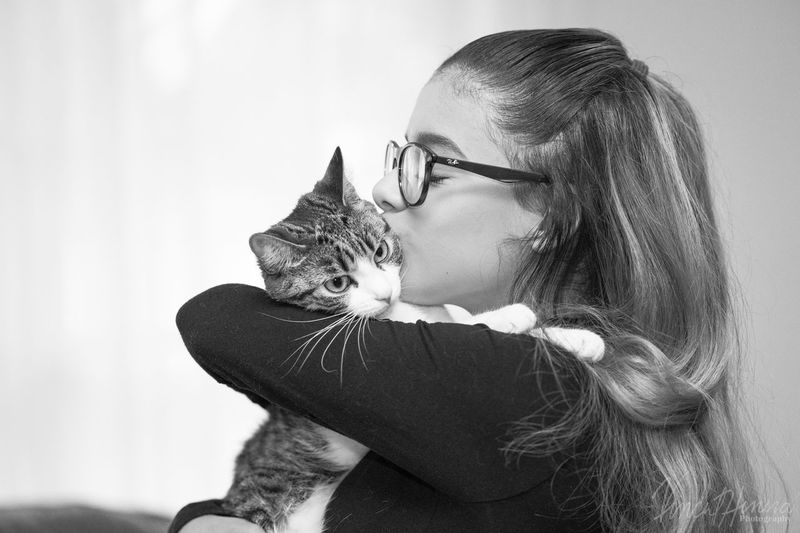 Pets Domestic Animals One Animal Domestic Cat Animal Themes Mammal Feline Cat One Person Love Real People Indoors  Friendship Home Interior Eyeglasses  Sitting Bonding Siamese Cat Young Adult Young Women