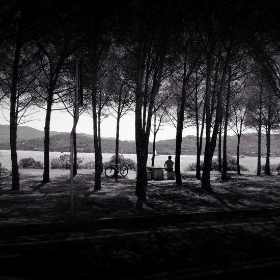 Blackandwhite Landscape Photography Landscape IPhone