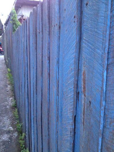 Color Palette Blue Wodden Wodden Texture
