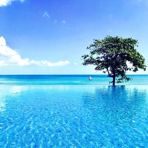 Shades of Blue First Eyeem Photo Bali Alilaseminyak Seminyak Pooltime Blue Sky