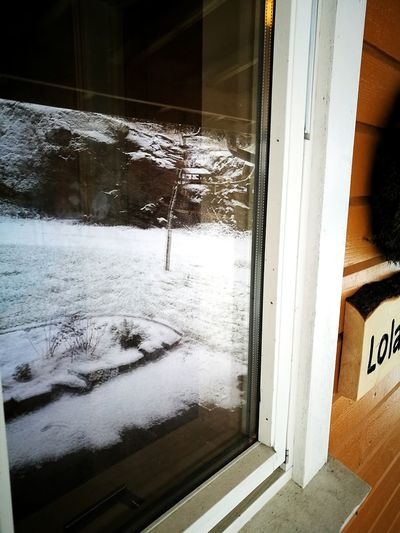 Winter in Norway Window Transparent Reflection