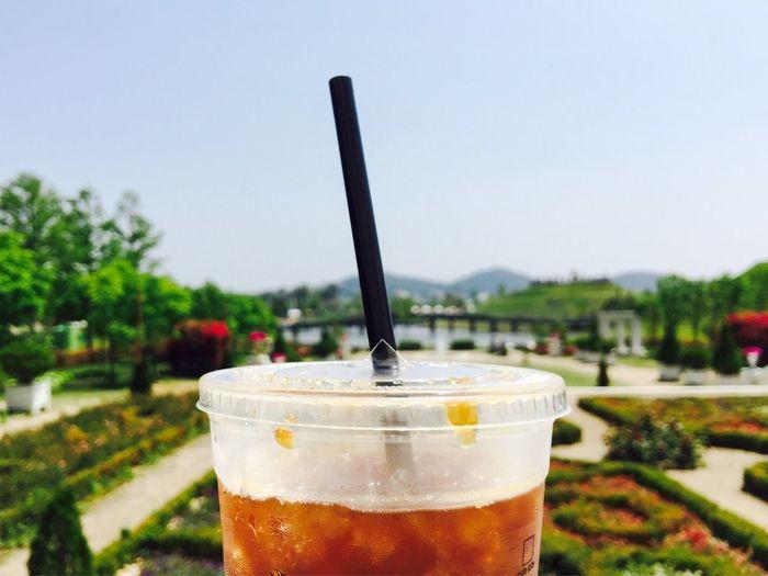 Coffee Cafe Americano Garden Park Hot Sunny