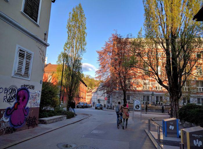 City in autumn colors. Architecture Sky Building Exterior City Tree Outdoors Autumn Autumn Colors Plečnik The City Light