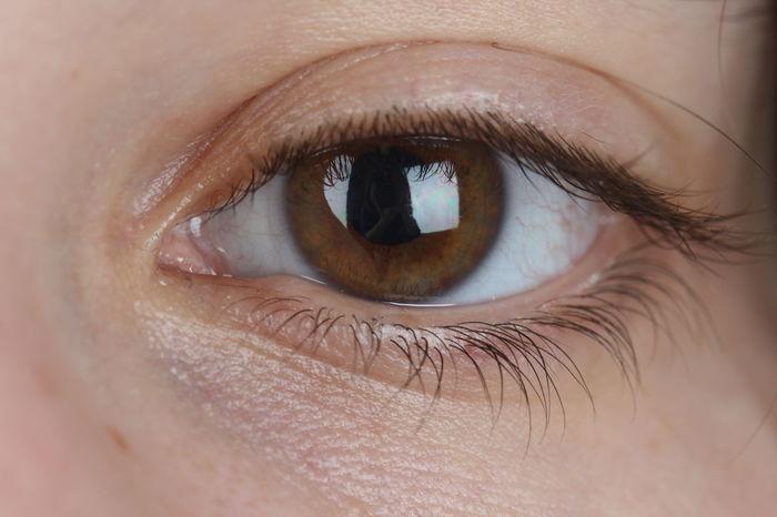 Eye Eye Watching You Eye Woman Eyelashes Eye Brown