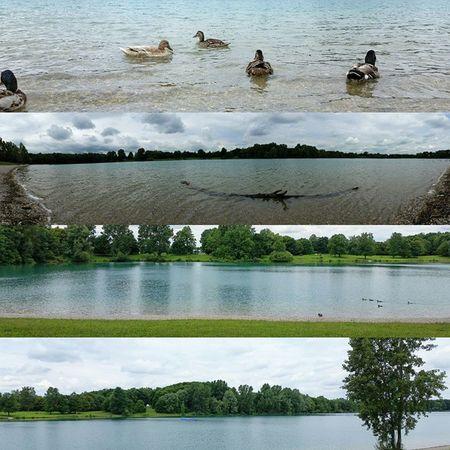 Karlsfeld Woda Jezioro