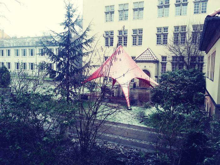 Not ready for the snow, not yet... Letitgo الربيع الألماني