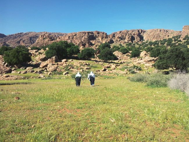 Morocco Landscape Blue Sky Montain  Greenery Nature Stone Light Tafraout Idaougnidif