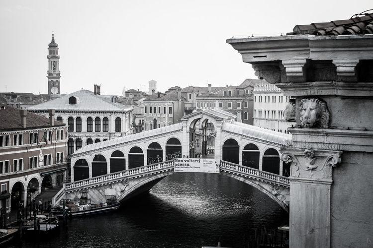 Rialto bridge over canal amidst buildings against clear sky