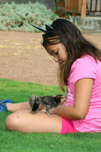 Raise Chickens Chicks Rock! EyeEm Selects Pets Child Childhood Friendship Girls Sitting Grass Domestic Animals