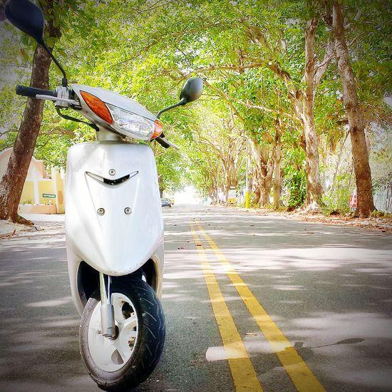 My moto Hello World moto