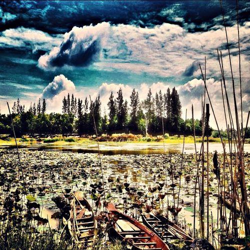 Enjoying Life EyeEm Best Shots EyeEm Best Edits EyeEm Best Shots - Landscape