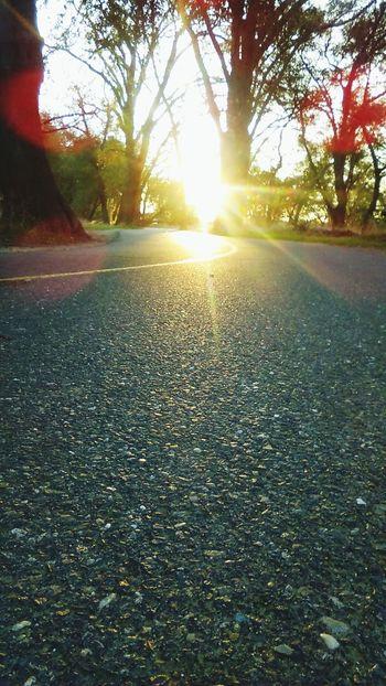 Running frees my soul! Running Free Runnersworld EyeEm Nature Lover American River Parkway Nofilter Riverside Fall Beauty Sunsetruns
