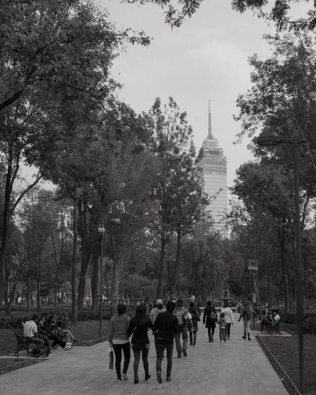 Alamed Mexico City Mexicourbano Mexicoalternativo Mexico, D.F.