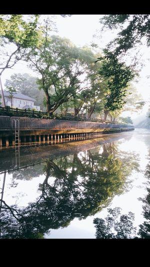 東京都足立区 Adachi Tokyo Japan Reflection River Tree