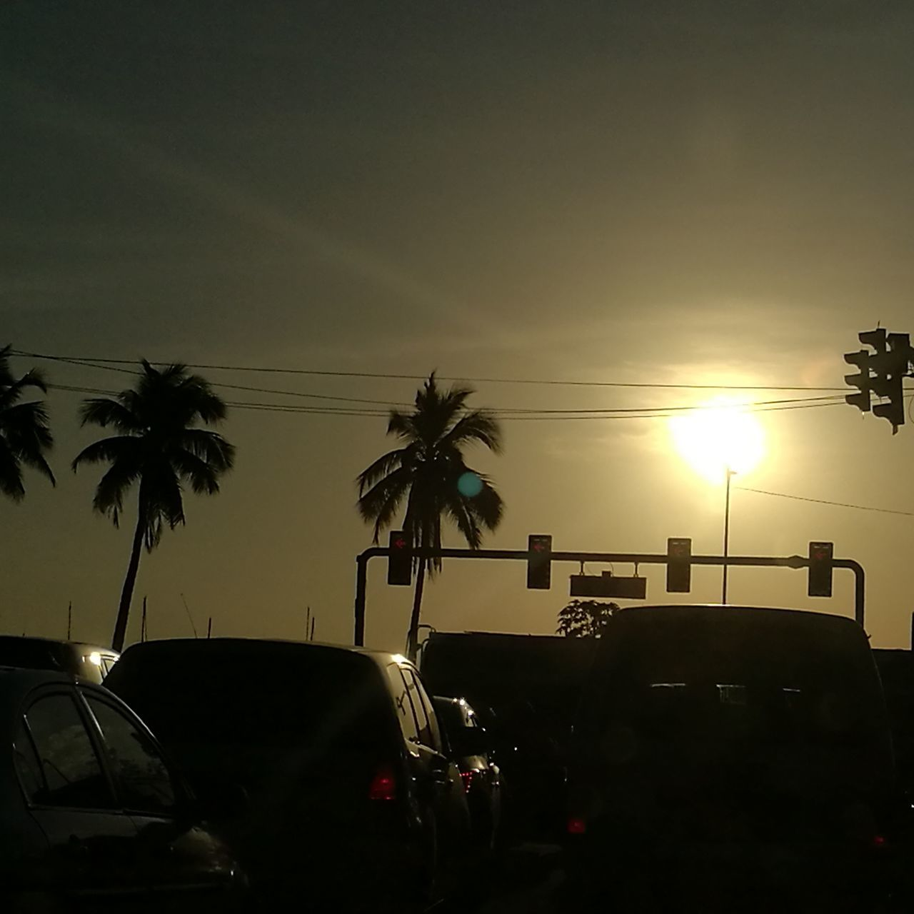 car, palm tree, sunset, land vehicle, transportation, mode of transport, tree, sun, sky, no people, silhouette, outdoors, day