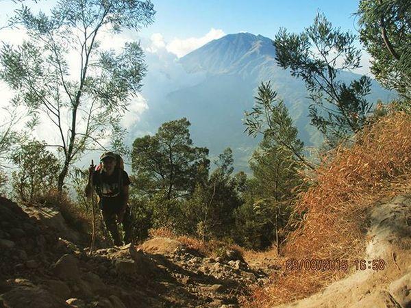 Ketika ditengah jalan kamu mulai lelah dan semangatmu menurun, ingat tujuanmu pertama kali memulai untuk apa dan demi siapa. :) Merapi Pendakiindonesia
