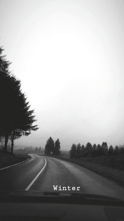 Tree Road Sports Race Running Track Sky Road Marking Country Road Asphalt Roadways Car Point Of View