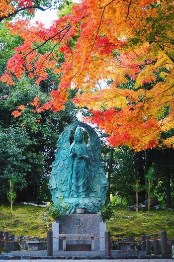 🍂🍁 Tenryuu-ji Temple Autumn Beauty In Nature Autumn Colors Autumn Leaves Autumn Maple Tree Japan Japan Photography Autumn Collection Kyoto Autumn🍁🍁🍁 Kyoto,japan Nature Maple Leaf Kyoto, Japan Beauty In Nature