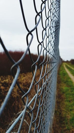 Fence Chainlink