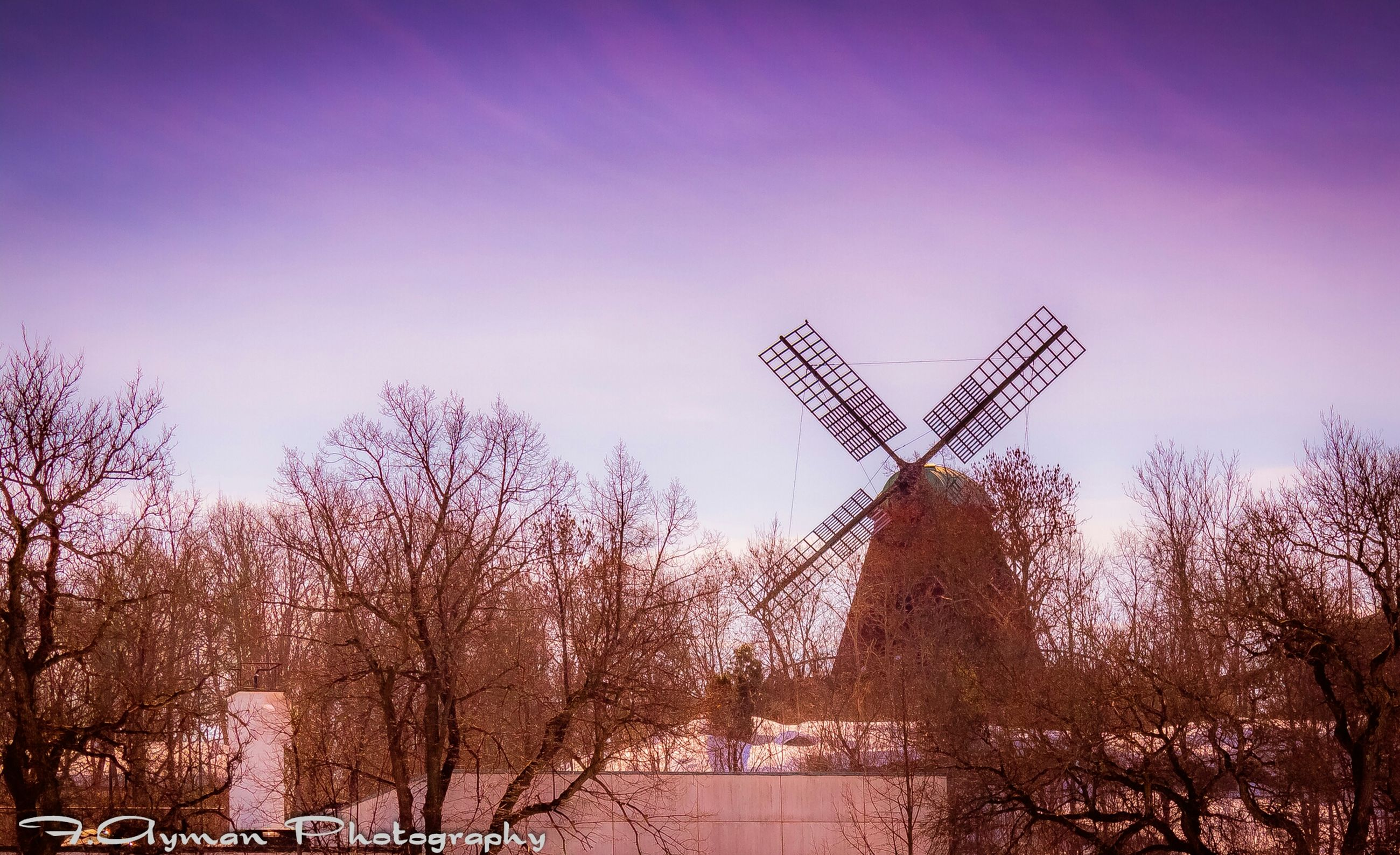 built structure, architecture, tree, clear sky, low angle view, building exterior, sky, crane - construction machinery, traditional windmill, construction site, outdoors, copy space, bare tree, day, no people, fuel and power generation, wind power, nature, dusk, development