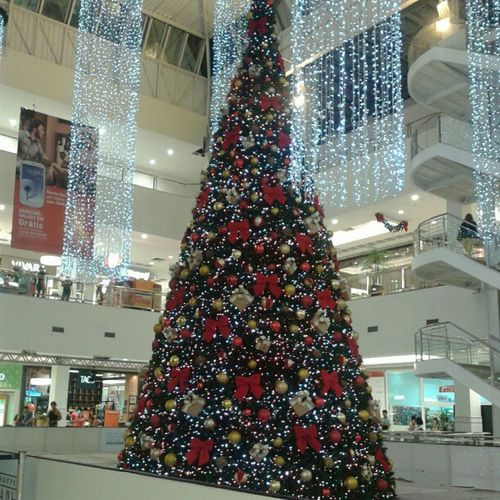 Arvore de natal do @shoppingdailha ta liiinda. Shoppingdailha Ontem