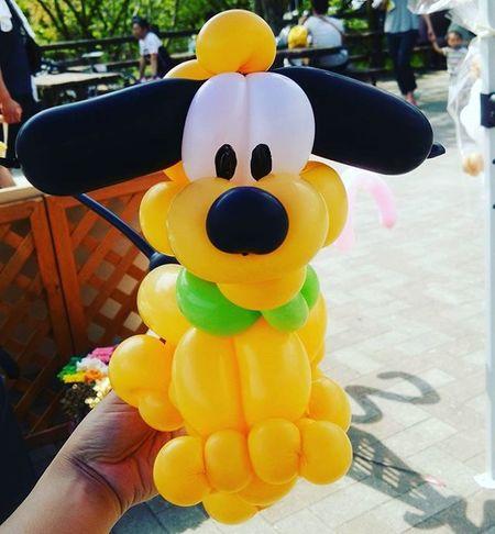 フルート ♡♡ あんまりキャラクター物は作らない バルーン バルーンアート バルーンアーティスト 風船 わんわん 犬 いぬ ディズニー Disney 夢の国 Dog Balloon Balloonart BalloonArtist Twister Likeforlike Like4like Instalike Instagood Instafollow