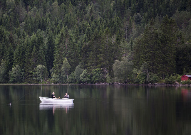 Beauty In Nature Boat Day Fishing Forest Lake Men Nature Nautical Vessel Outdoors People Real People Reflection Scenics Togetherness Tranquility Tree Water