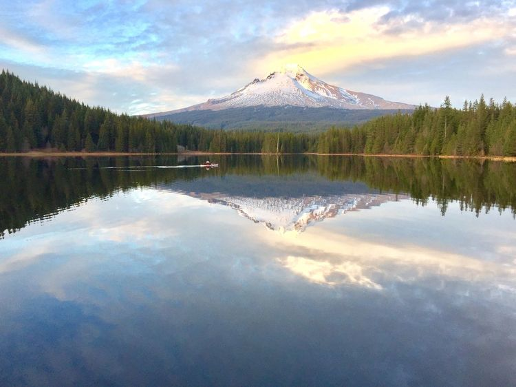 Mt Hood Trillium Lake Oregon Beauty In Nature Reflection Nature Scenics Mountain Sky Water Tranquil Scene Tranquility Lake No People Day Landscape Tree