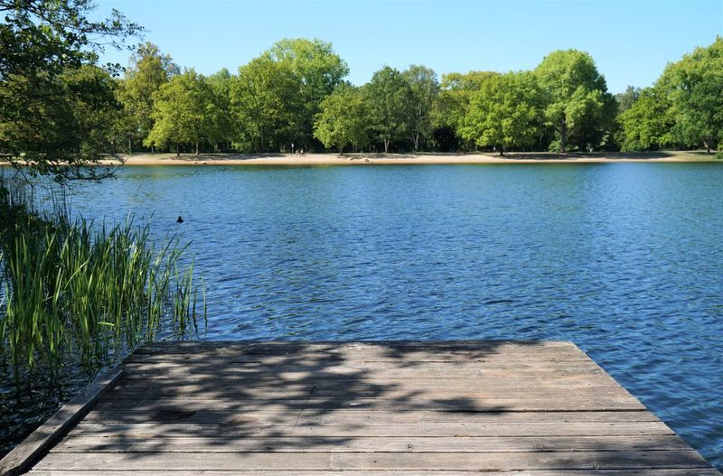 Lake Spring Summer No People Bathing Lake Nature Outdoors Local Recreation Jetty Pier Wood Wooden Water Platform Landscape