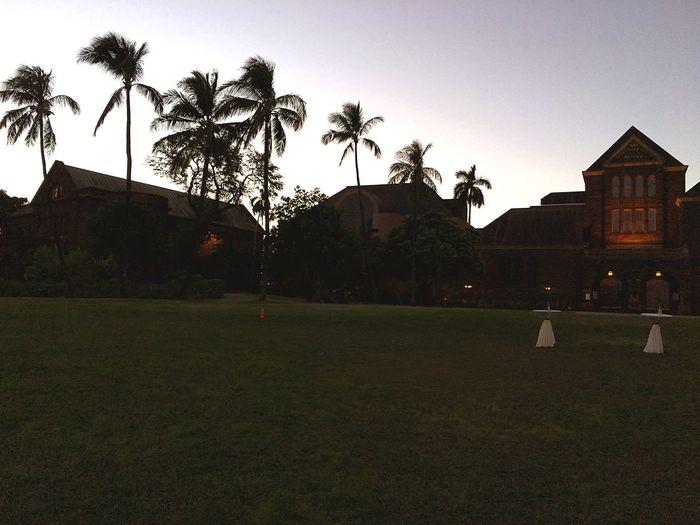 EyeEm Hawaii Life Hawaii Night Museum Bishop Museum Plant Sky Tree Built Structure Architecture Building Exterior Grass