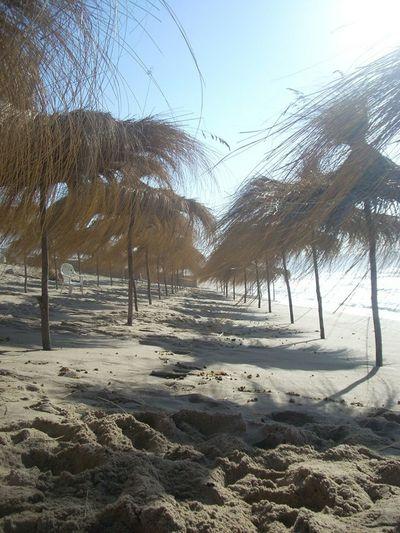 Beach Sandbeach Taking Photos My Country