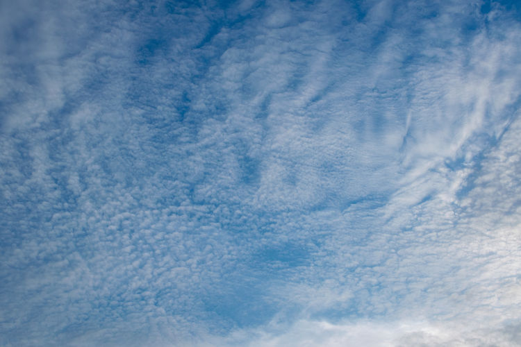 Cloud - Sky Sky Blue No People Backgrounds Nature Beauty In Nature Full Frame Tranquility Scenics - Nature Cloudscape White Color Day Environment Low Angle View Tranquil Scene Idyllic Outdoors Fluffy Meteorology Softness Purity
